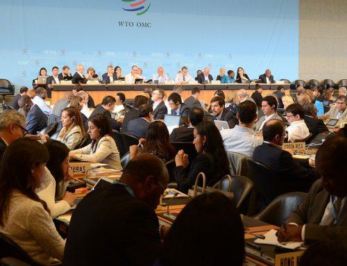 Seade y la OMC