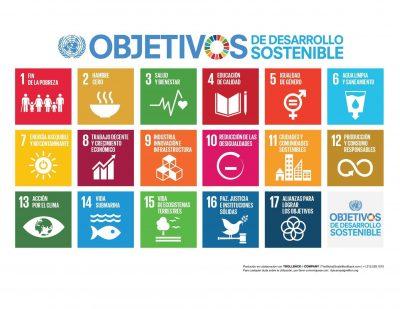 Crítica y desmitificación de los ODS